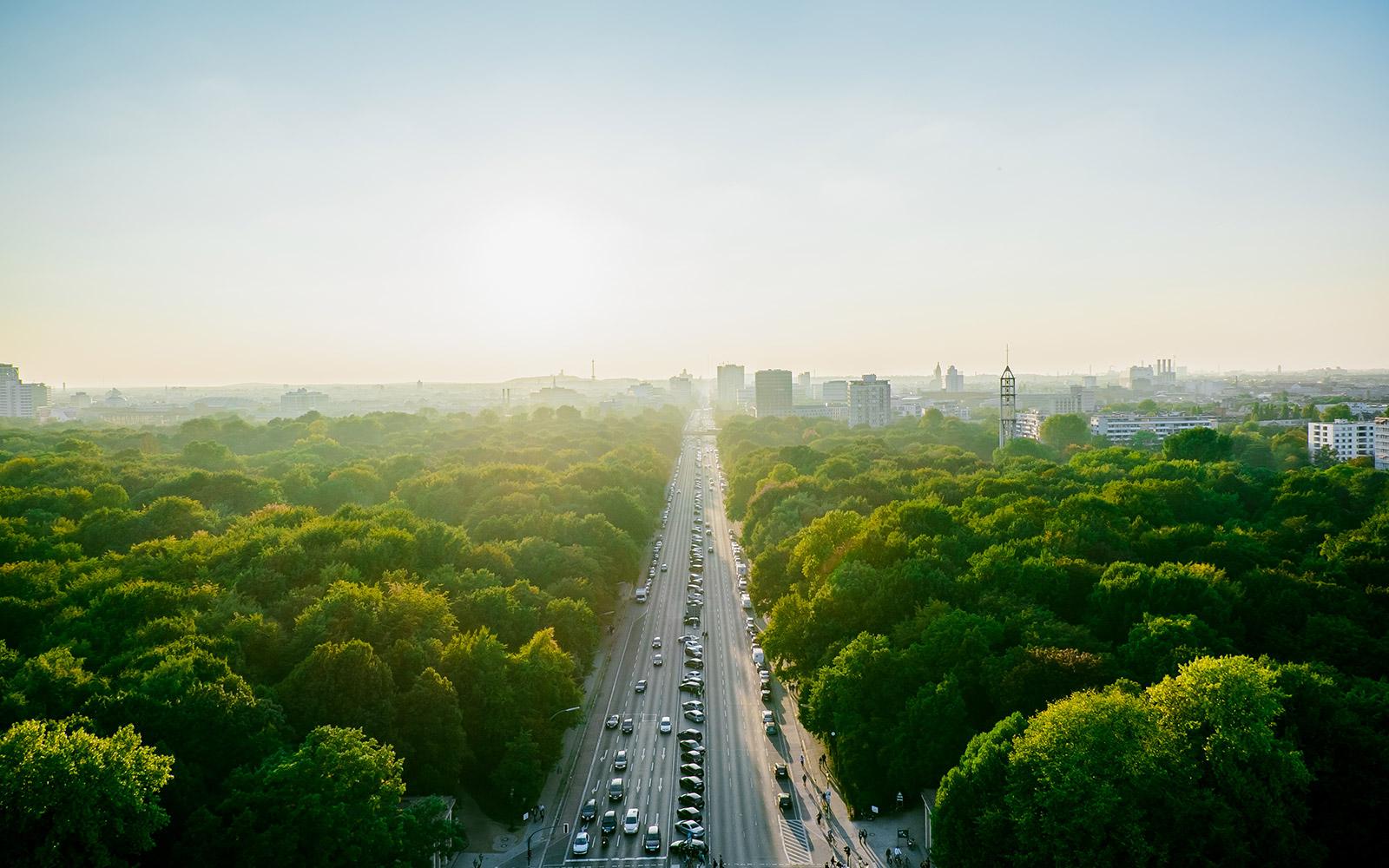 Flyg Till Berlin Billiga Flyg Flera Gånger Om Dagen Sas